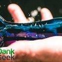 DankGeek Review